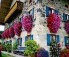 Dom na wiosnę z kwiatami w oknach