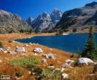 Lato w górach wysokich