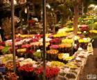 Targ kwiatowy, Amsterdam, Holandia