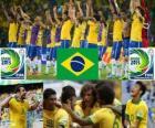 Brazylia Puchar Konfederacji 2013