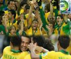Brazylia, mistrz Copa FIFA Konfederacji 2013
