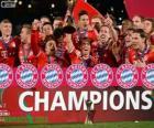 Bayern Monachium, Mistrz Klubowe mistrzostwa świata 2013
