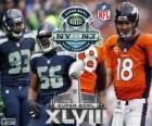 Super Bowl 2014. Seattle Seahawks vs Denver Broncos. MetLife Stadium w New Jersey, na 2 lutego 2014