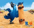 Blu jest ara zabawy i głównym bohaterem filmu Rio