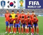 Wybór Korei Południowej, Grupa H, Brazylia 2014