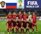 Wybór Rosji, Grupa H, Brazylia 2014