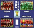 Grupa H, Brazylia 2014