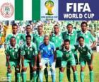 Wybór Nigerii, Grupa F, Brazylia 2014