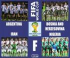Grupa F, Brazylia 2014
