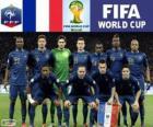 Wybór Francji, Grupa E, Brazylia 2014
