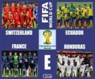 Grupa E, Brazylia 2014
