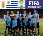 Wybór grupy D, Urugwaj, Brazylia 2014