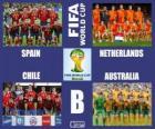 Grupa B, Brazylia 2014