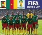 Wybór Kamerun, Grupa A, Brazylia 2014