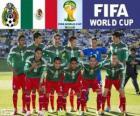 Wybór grupy A, Meksyk, Brazylia 2014