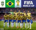 Wybór Brazylii, Grupa A, Brazylia 2014