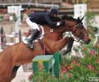 Koń i jeździec mijania przeszkód w konkursie skoków