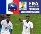 Paul Pogba, nagrody młodym graczem. Brazylia 2014 roku Puchar Świata