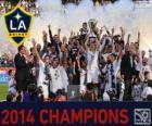 Los Angeles Galaxy, mistrz MLS 2014