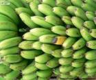 Bananów zielone i żółte