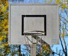 Kosze koszykówka