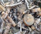 Drewno opałowe jest stosowany, aby ogień w Piece, Kominki