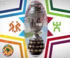 Puchar dla zwycięzcy Copa America Chile 2015