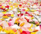 Płatki róż ślub