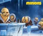 Minionki na Antarktydzie