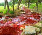 Krajobraz z rzeką czerwony