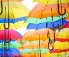 Parasol kolorów