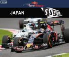 Carlos Sainz Jr, Grand Prix Japonii 2016