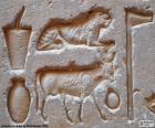 Hieroglificznego rzeźby