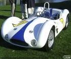 Maserati Tipo 61 lub Maserati Birdcage, samochodów wyścigowych, produkowane w 1960
