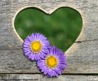 Serca i dwa kwiaty