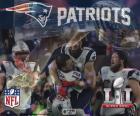 Patriots, Super Bowl 2017