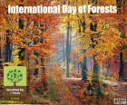 Międzynarodowy Dzień Lasów