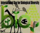 Międzynarodowy Dzień Różnorodności Biologicznej