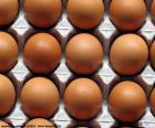 Kurzymi jajkami
