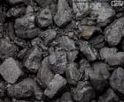 Węgle kopalne