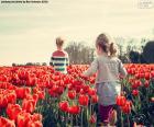 Dziewczyny, między tulipany