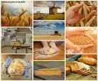 Kolaż z chleba