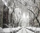 Pokryte śniegiem Street