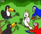 Pięć ptaków Julieta Vitali