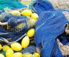 Siatka rybacka jest pasywnym narzędziem połowowym