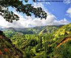 Układanka Góry kaakar, Turcji