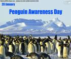 Dzień Świadomości Pingwinów