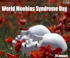 Światowy Dzień Zespołu Moebiusa