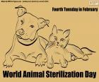 Światowy Dzień Sterylizacji Zwierząt