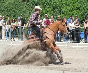 Układanka Reining - Western riding - Ride Cowboy